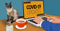 COVID-19 Work from Home Quarantine Image by thedarknut from Pixabay